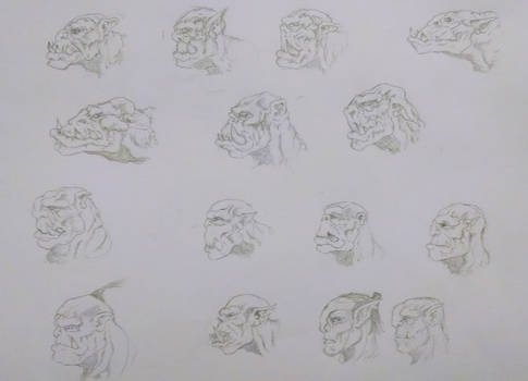 Orc Face Sketches