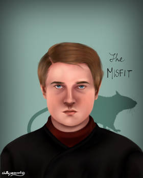 Peter Pettigrew/ Wormtail