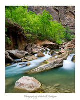 Flowing through Zion
