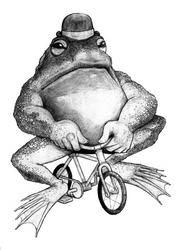 bullfrog on a bike_drawing by Coffeehouseartist