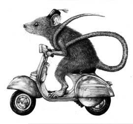 rat on a vespa wearing fez by Coffeehouseartist