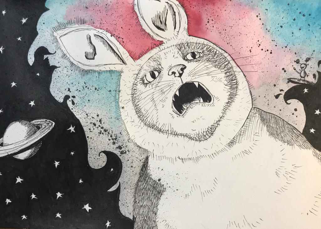 Cat or Rabbit  by NeleSelvi