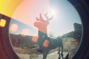 Dear deer by TekilaCat