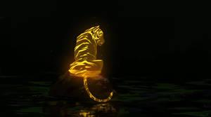 Tiger by Ephasme