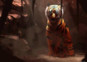 DTA : Tiger