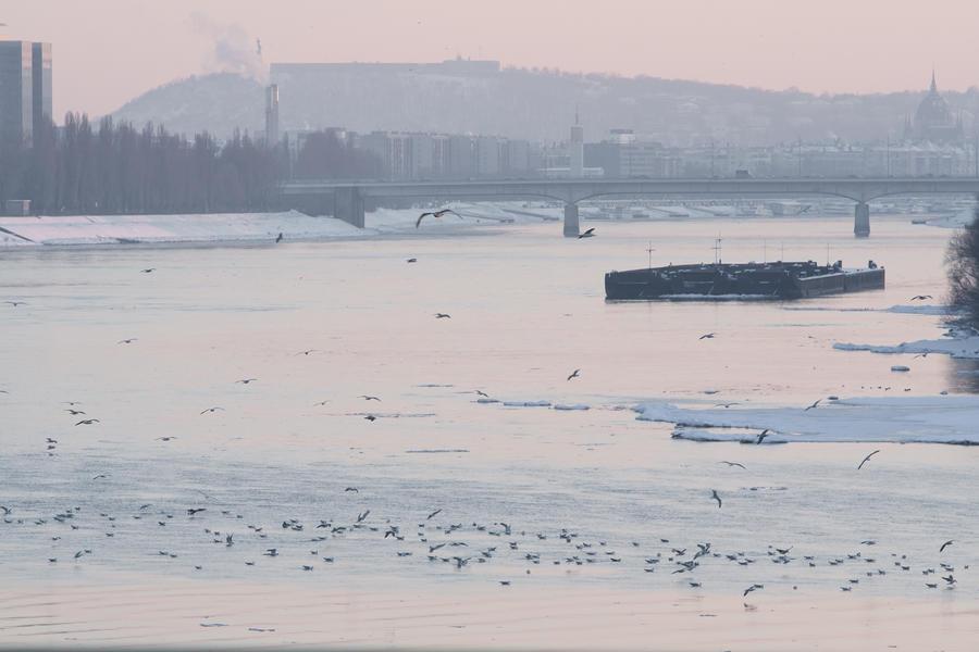 The frozen Budapest