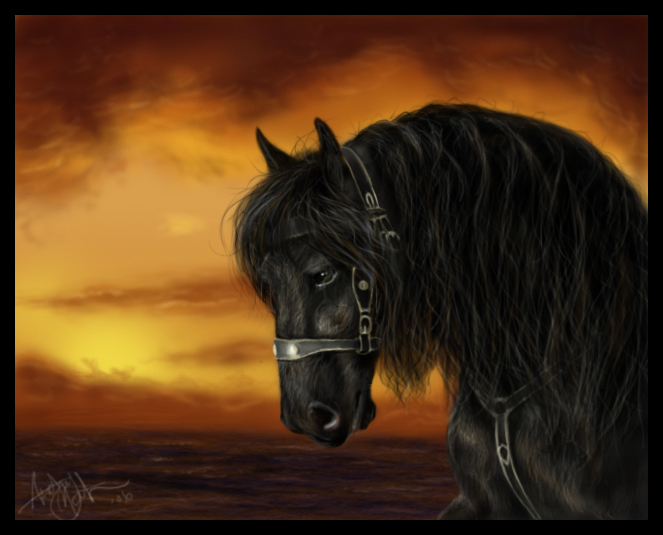 http://fc48.deviantart.com/fs7/f/2006/345/a/d/Horse_realism_attempt_by_crypticFallon.jpg
