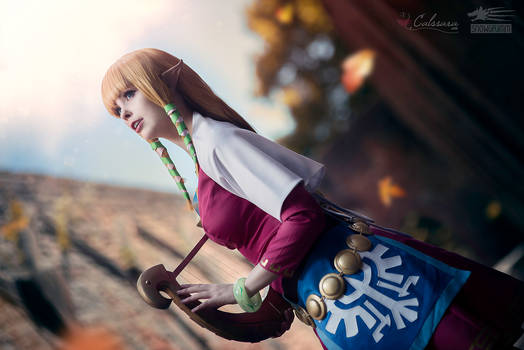 Zelda - Skyward Sword III