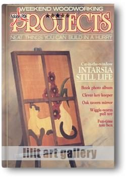 کتاب هفدهم آموزش پروژههای چوبی
