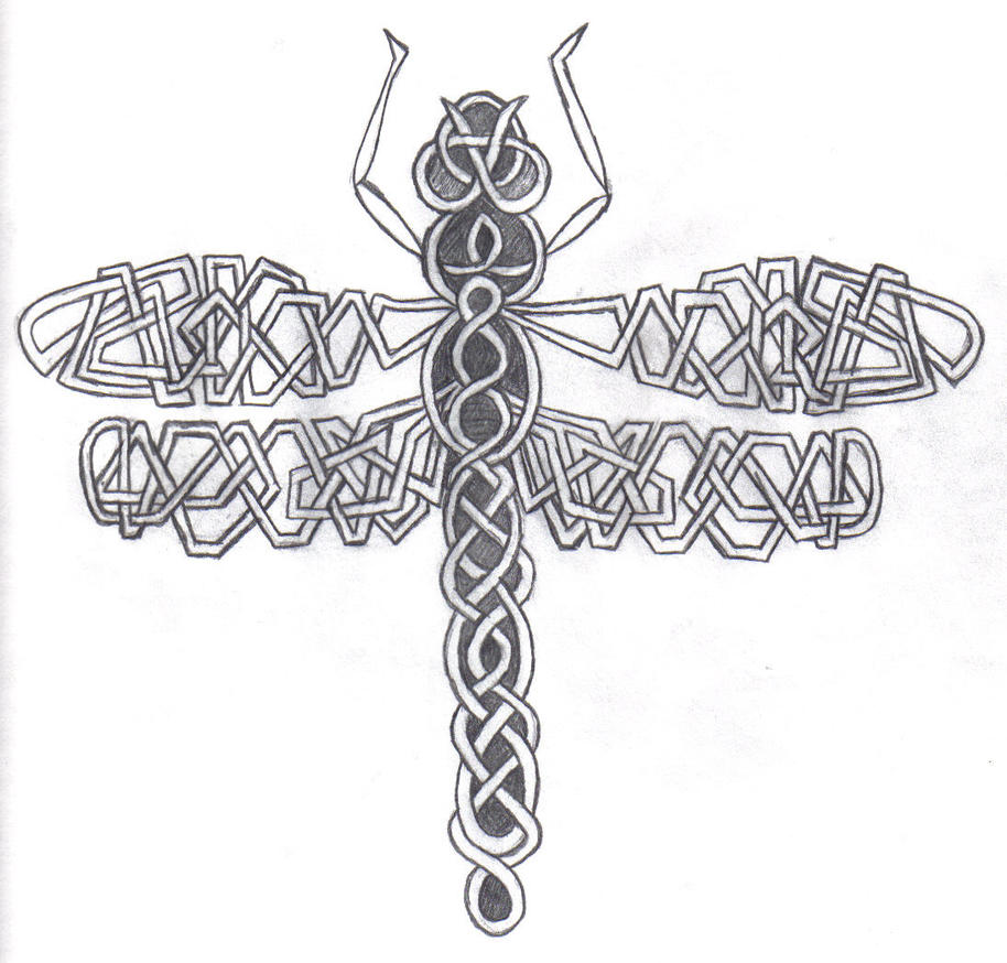 Celtic Dragonfly Drawings