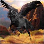 Black Desert Pegasus (HEE)