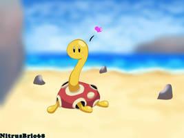 Pokemon - Shuckle by NitrusBrio68