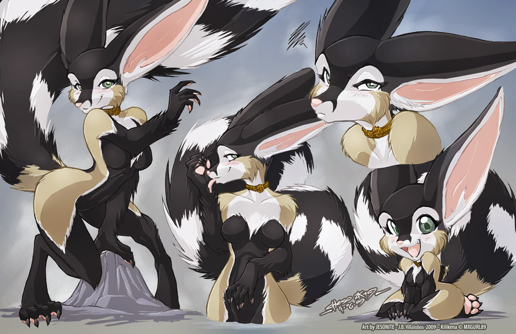 Commission - KILLIKENA PIC SET by jesonite