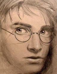 Harry by starrdust