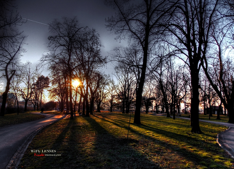 The sun on the ground by Piroshki-Photography