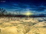 Winterscape by Piroshki-Photography