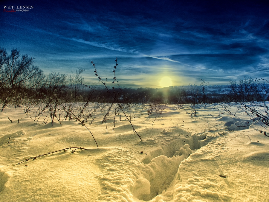 Winterscape by Piroshki-Photography
