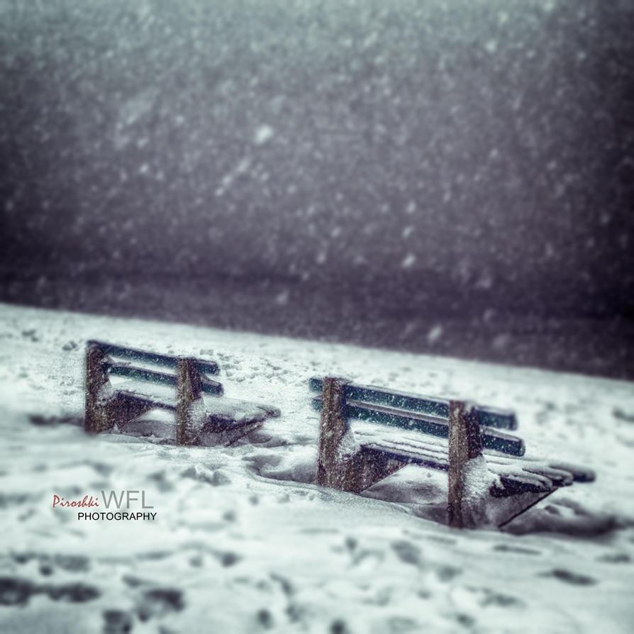 Song of winter wonderland by Piroshki-Photography