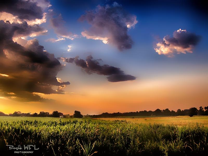 Enchanted dawn by Piroshki-Photography