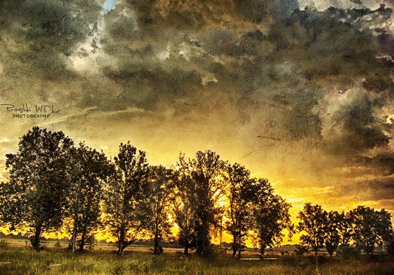 Rise of light by Piroshki-Photography