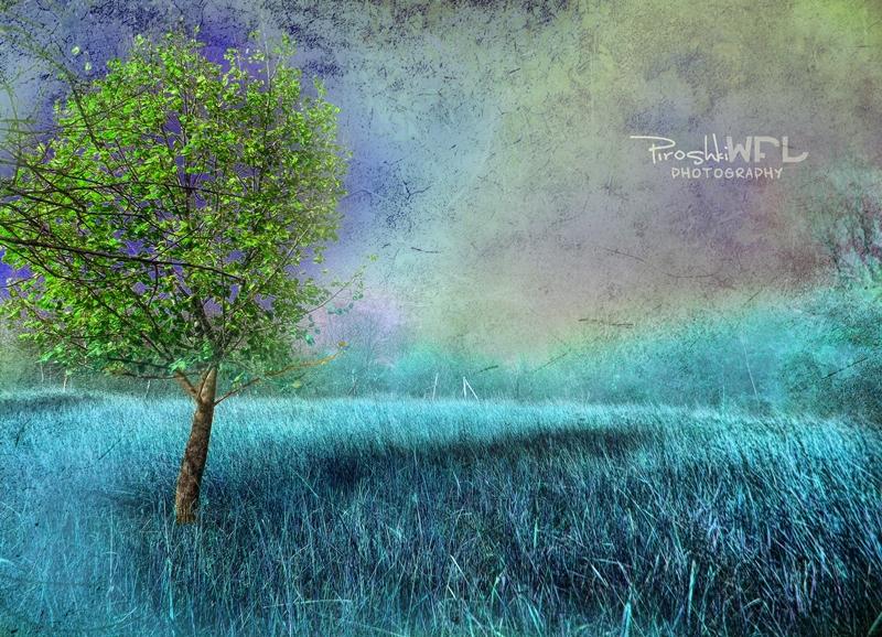 Surreal dream by Piroshki-Photography