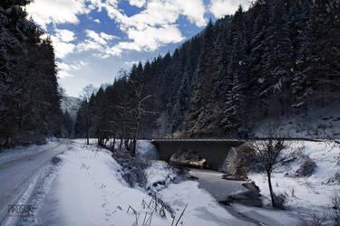 Winter fairytale by Piroshki-Photography