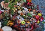 Mushrooms Basket