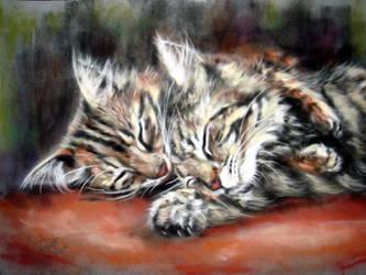 Kitten Cuddles by astarvinartist