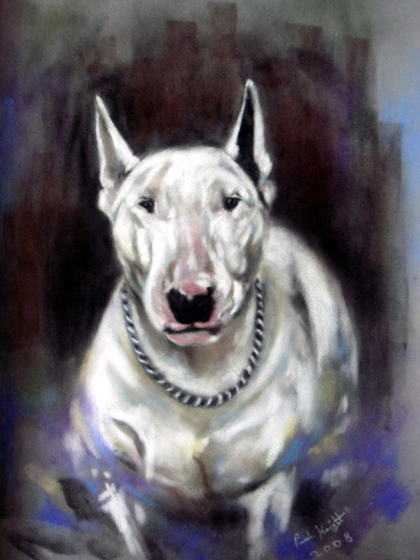 English Bull Terrier By Astarvinartist On DeviantArt - Bull terrier art