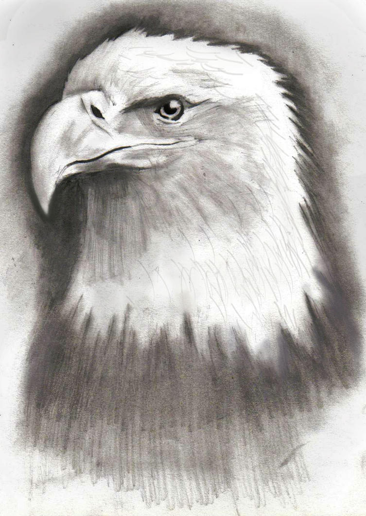 how to make an eagle drawing