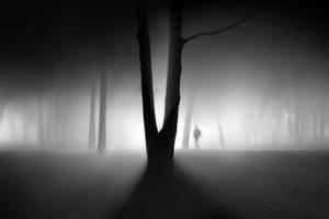 Mystic fog by Vlad-Off-kru