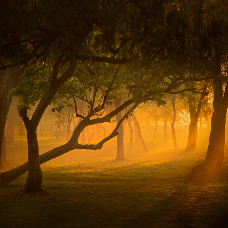 the dawn of awakening by Vlad-Off-kru