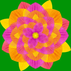 Warm Color Flower