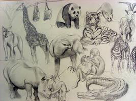 Animals by artista211