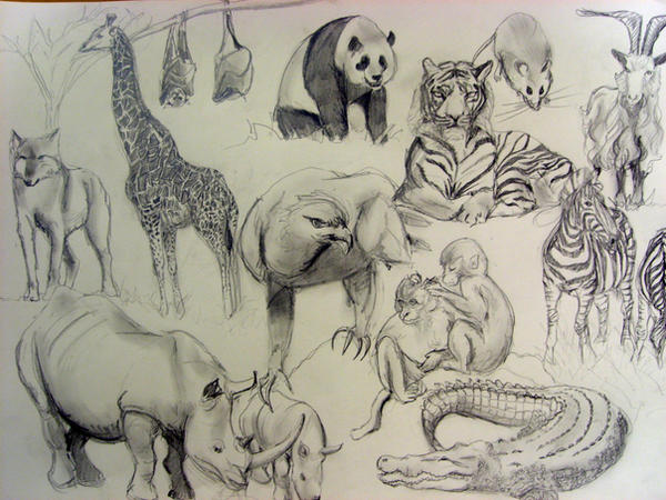 Animals by artista211