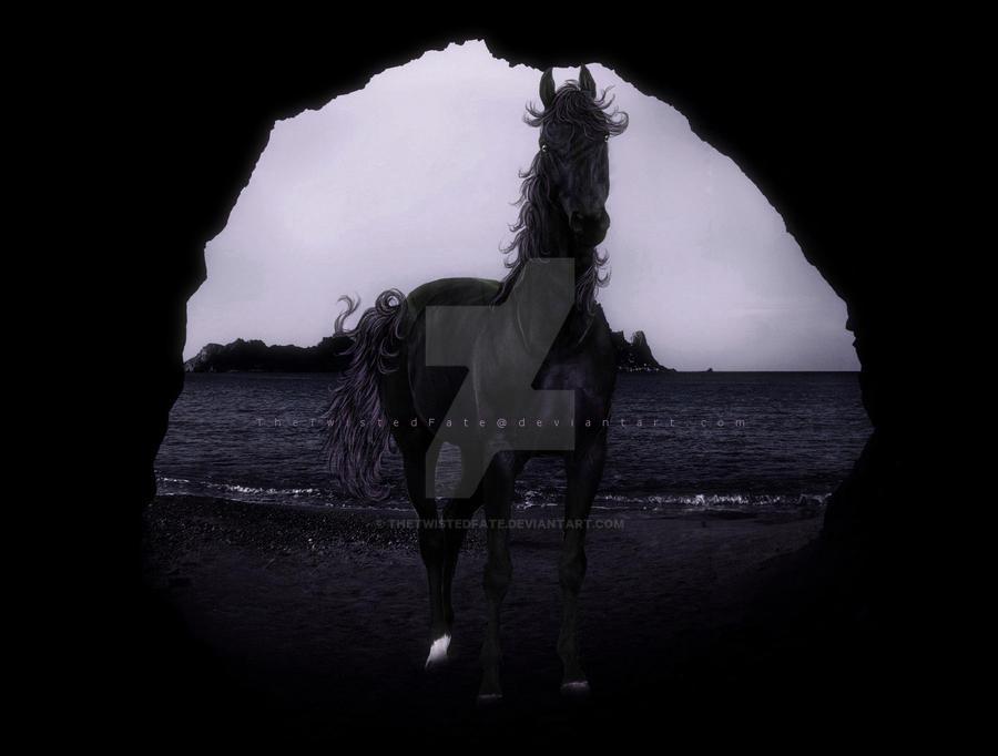 Dark Ebony by TheTwistedFate