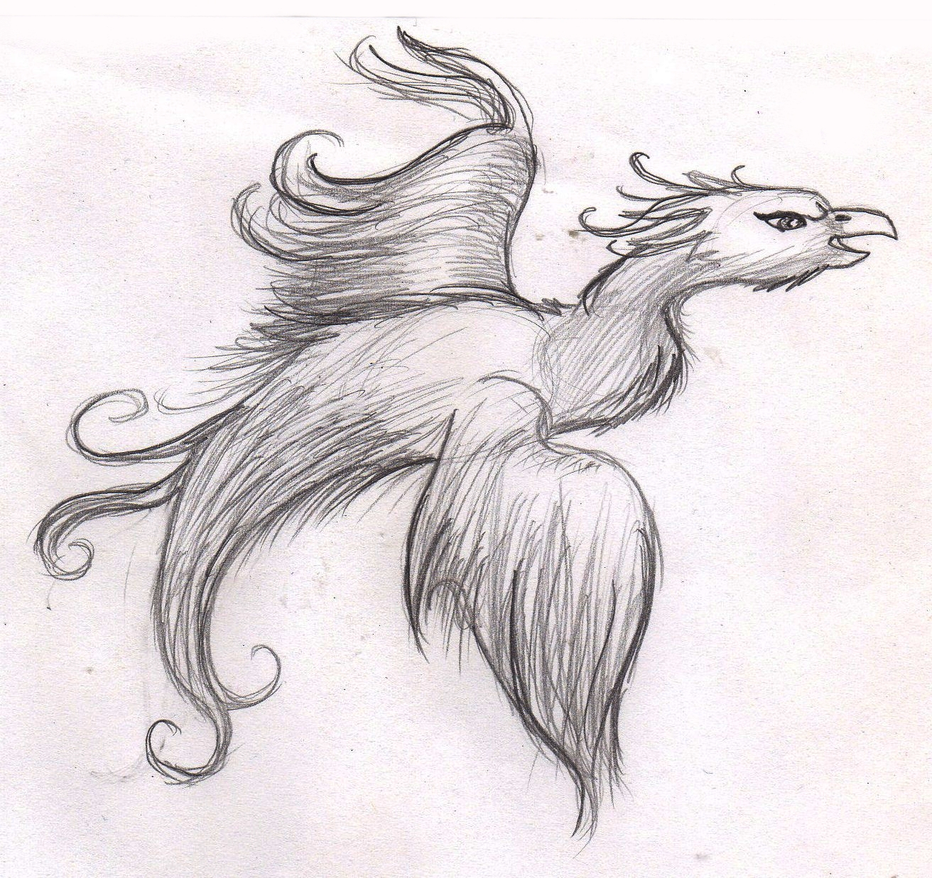 Phoenix by mashaheart