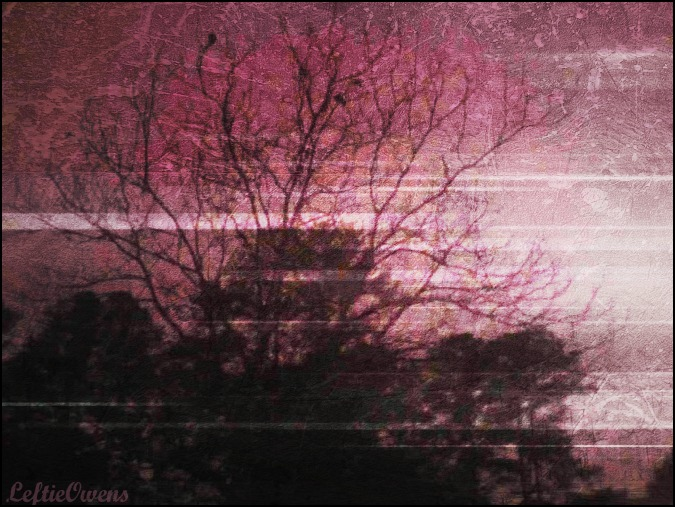 Pink Sky by CodyGallo