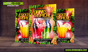 Drink Tropical And Cocktail PSD Flyer Template by ryrdesign