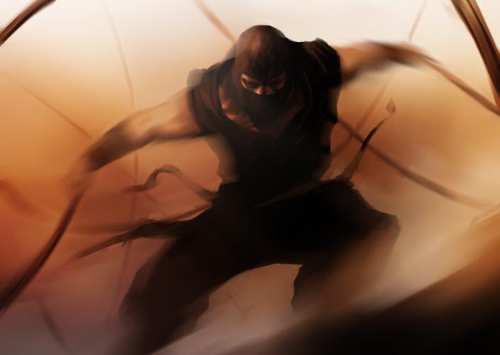 Ninja by bumhand