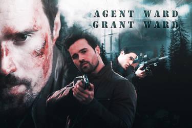 Agent Ward by MorganGrafics