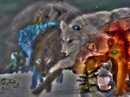 Spirit Pack by AuroraLaLune