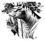 Thylacosmilus - sabretooth cat