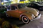 RIP matty this beetle for u