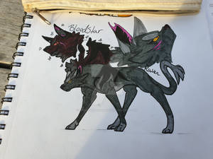 BloodStar and Raven my fan characters
