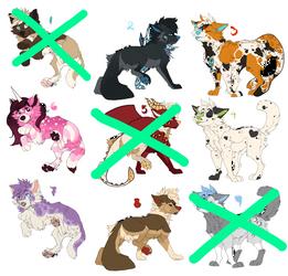 Canine adopt batch