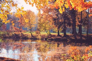Wonderful autumn by MadisonStar