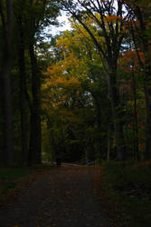 Q-Trail Herbst by Ken-Griffith