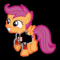 Scootaloo in her Cincinnati Bengals jersey