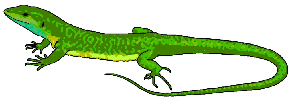 green lizard clipart by misterbug on deviantart rh misterbug deviantart com reptile black and white clipart free reptile clipart